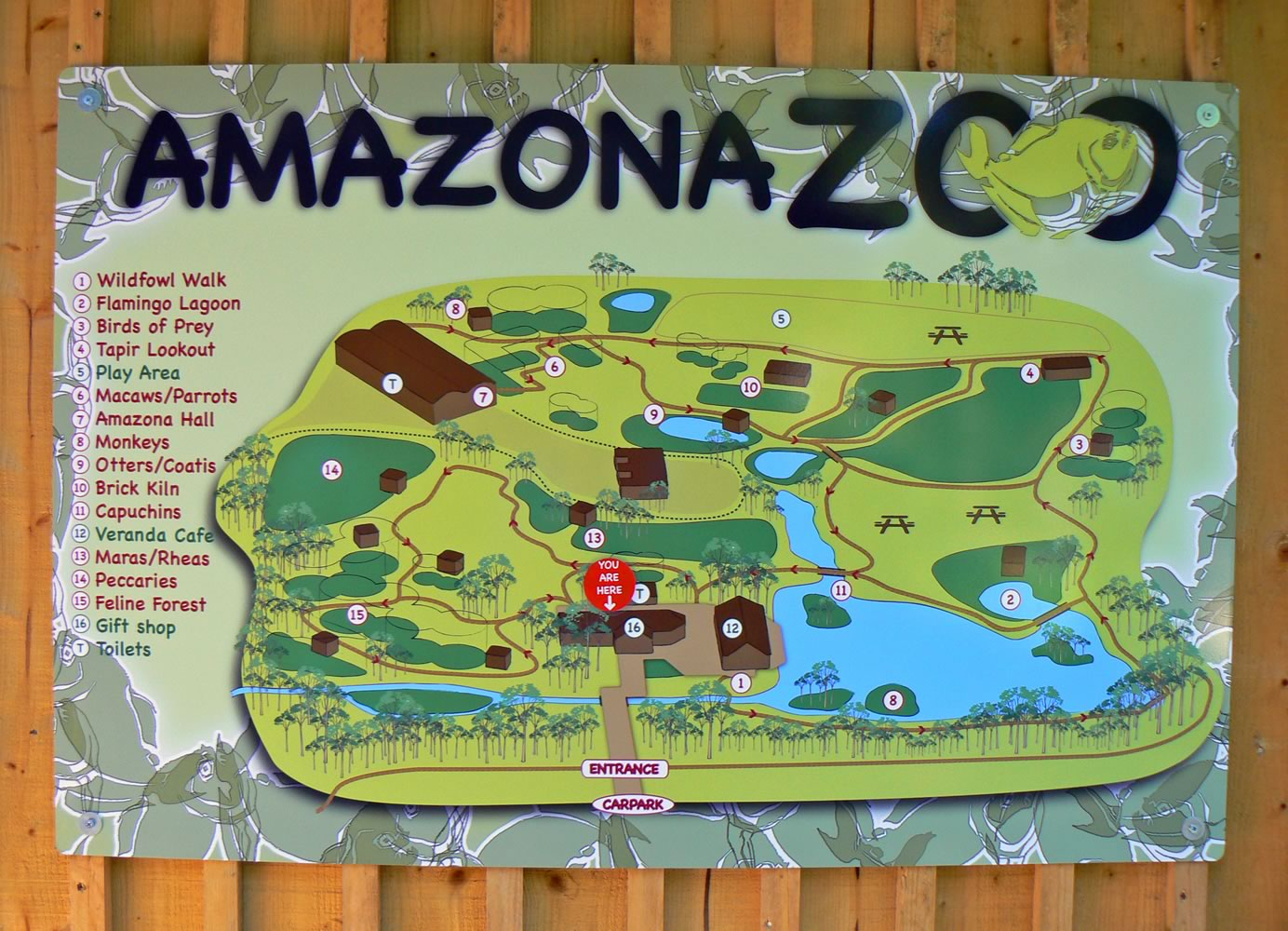 Zoo Map Template Small Zoo Maps