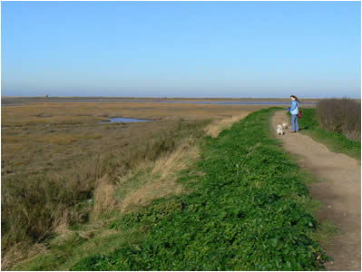 Blakeney Coast Path