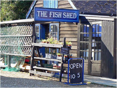 The Fish Shed