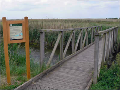 Cley Nature Reserve