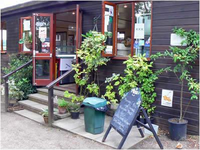 Fairhaven woodland and water gardens norfolk broads for Garden office norfolk