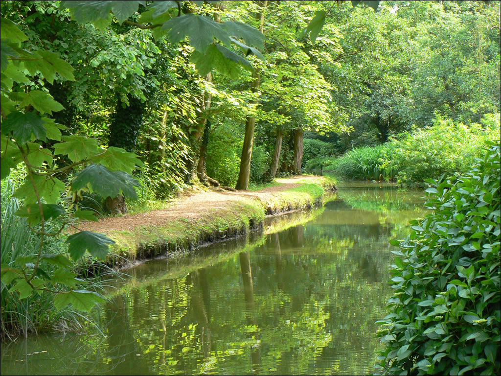Fairhaven Woodland And Water Gardens Norfolk Broads