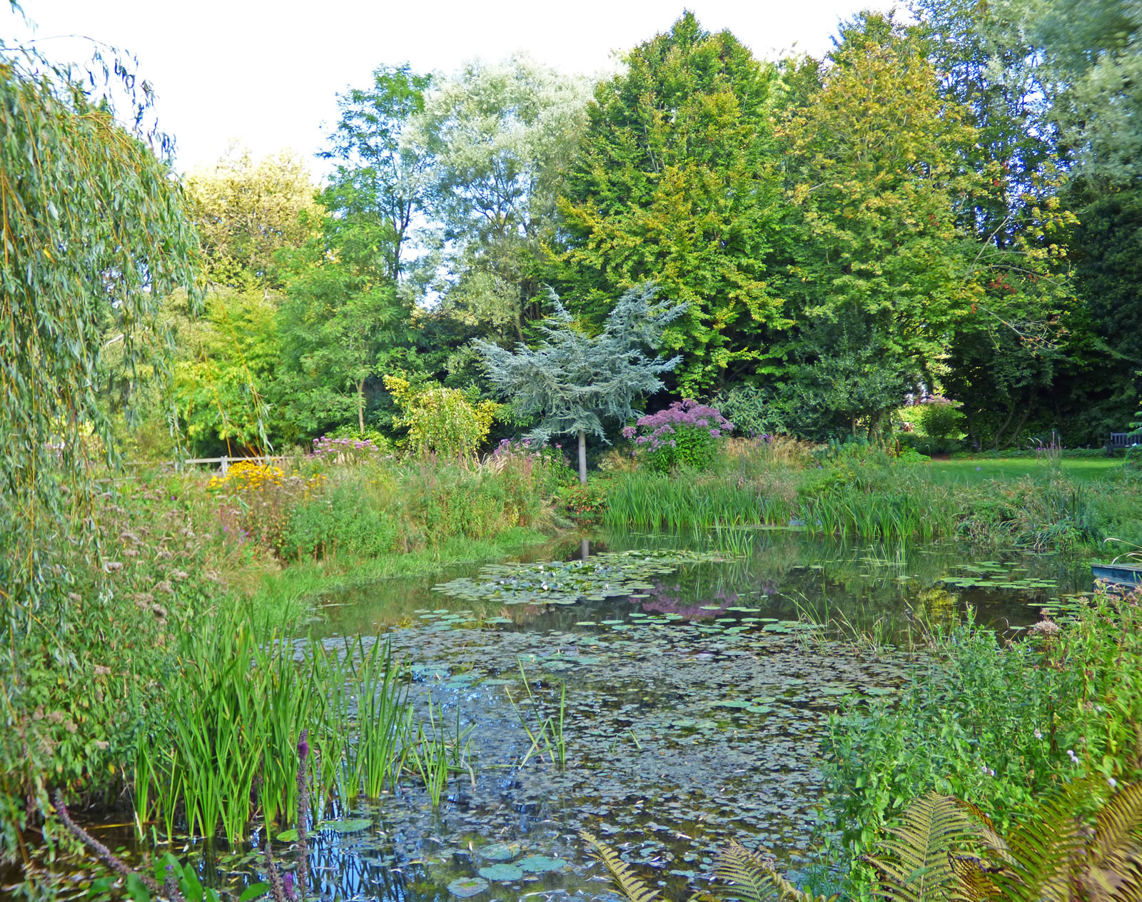 Scenic Gooderstone Water Garden With Heavenly Another Beautiful View Over One Of The  Ponds With Appealing Caths Garden Plants Also Gardening At Home In Addition Decorative Gardens And Cadbury Garden And Leisure As Well As Covent Garden Indian Restaurant Additionally Mundells Welwyn Garden City From Tournorfolkcouk With   Heavenly Gooderstone Water Garden With Appealing Another Beautiful View Over One Of The  Ponds And Scenic Caths Garden Plants Also Gardening At Home In Addition Decorative Gardens From Tournorfolkcouk