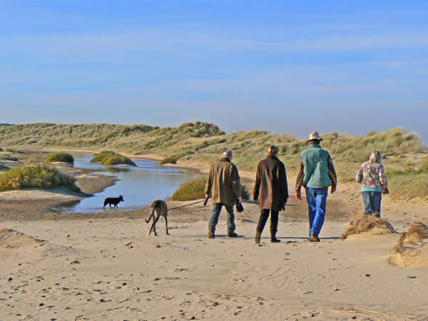Holkham Bay Dog Walking