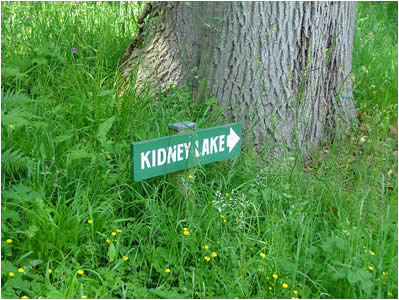 Kidney Lake Sign