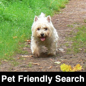 Pet Friendly Search
