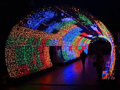 Christmas Light Tunnel