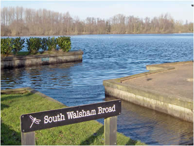 South Walsham Broad