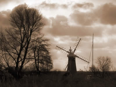 Marshes and Windmill