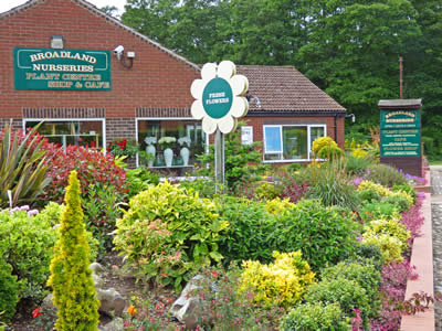 Broadland Nurseries